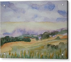 Field And Sky 1 Acrylic Print by Warren Thompson