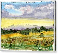 Field And Sky 2 Acrylic Print by Warren Thompson