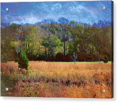 Field And Trees Acrylic Print