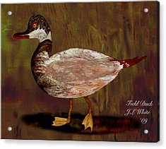 Field Duck Acrylic Print by Jerry White