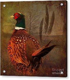 Field Finery 2015 Acrylic Print
