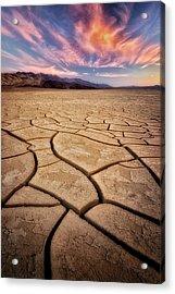 Field Of Cracks Acrylic Print by Nicki Frates