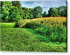 Field Of Dreams Iv Acrylic Print by Steven Ainsworth