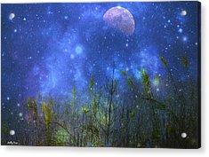 Field Of Fireflies Acrylic Print by Molly Dean