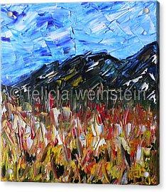 Field Of Flowers 1 Acrylic Print