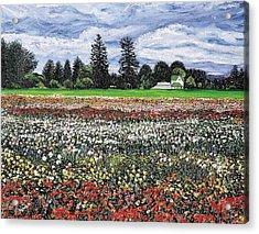 Field Of Flowers Acrylic Print by Richard Nowak