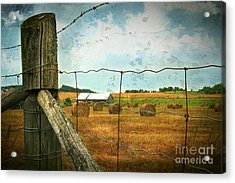 Field Of Freshly Cut Bales Of Hay Acrylic Print by Sandra Cunningham