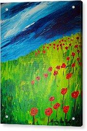 field of Poppies 2 Acrylic Print by Misty VanPool