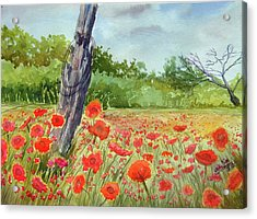 Field Of Red Flowers Acrylic Print by Ron Stephens