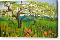 Field Of Red Poppies Acrylic Print by Mabel Moyano