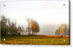 Field Of The Morn Acrylic Print