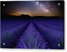 Fields Of Eden Acrylic Print