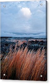 Fields Of Fire Acrylic Print
