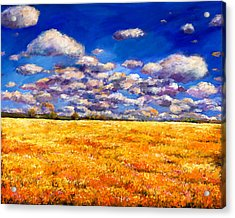 Fields Of Gold Acrylic Print by Johnathan Harris
