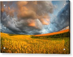 Fields Of Storm Acrylic Print