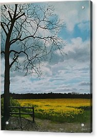 Fields Of Yellow Acrylic Print