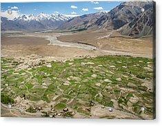 Acrylic Print featuring the photograph Fields Of Zangla, Zanskar, 2008 by Hitendra SINKAR