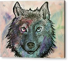 Fierce And Wise Acrylic Print
