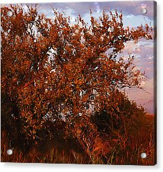 Acrylic Print featuring the digital art Fiery Elm Tree  by Shelli Fitzpatrick