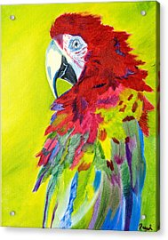 Fiery Feathers Acrylic Print