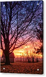 Acrylic Print featuring the photograph Fiery Morning Sunrise by Lars Lentz