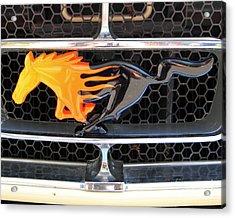 Fiery Mustang Acrylic Print