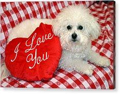 Fifi Loves You Acrylic Print by Michael Ledray