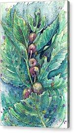 Figful Tree Acrylic Print