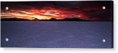 Acrylic Print featuring the photograph Fight For The Light by Edgars Erglis