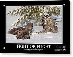 Fight Or Flight Acrylic Print