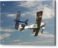 Fighting Colours 2 - Fokker D. Vll - Nieuport Acrylic Print by Pat Speirs