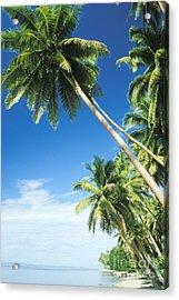 Fiji, Vanua Levu Acrylic Print by Peter Stone - Printscapes