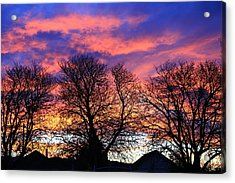 Acrylic Print featuring the painting Filigree Sunset by Nareeta Martin
