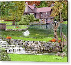 Acrylic Print featuring the drawing Fin N Feather At Seven Springs by Albert Puskaric