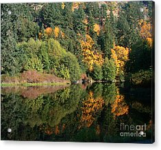 Acrylic Print featuring the photograph Final Reflection by Larry Keahey