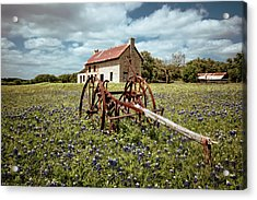 Acrylic Print featuring the photograph Final Resting Place by Linda Unger
