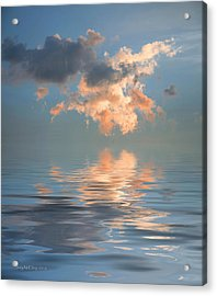 Final Words Acrylic Print by Jerry McElroy