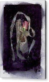 Finale Acrylic Print by Bob Senesac