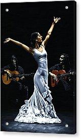 Finale Del Funcionamiento Del Flamenco Acrylic Print by Richard Young