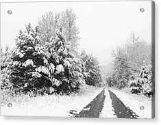Acrylic Print featuring the photograph Find A Pretty Road by Lori Deiter