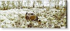 Fine Art Tasmania Bushland Acrylic Print