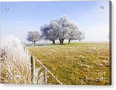 Fine Art Winter Scene Acrylic Print