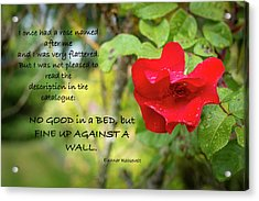 Fine Up Against A Wall Acrylic Print by Mary Lee Dereske
