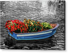 Acrylic Print featuring the photograph Fine Wine Cafe Boat Parade by Aimee L Maher Photography and Art Visit ALMGallerydotcom