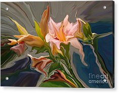 Finery Acrylic Print by Corey Ford