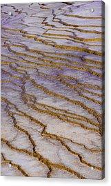 Fingerprint Of The Earth Acrylic Print