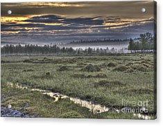 Finnish Moorland Acrylic Print by Heiko Koehrer-Wagner