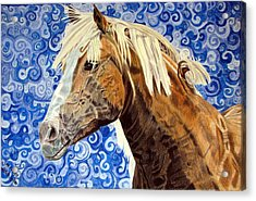 Acrylic Print featuring the drawing Fiosa by Melita Safran