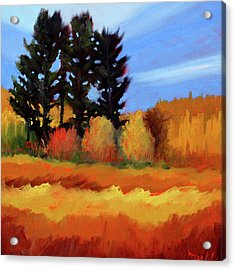 Fir In The Field Acrylic Print