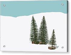 Fir Trees In The Snow Acrylic Print